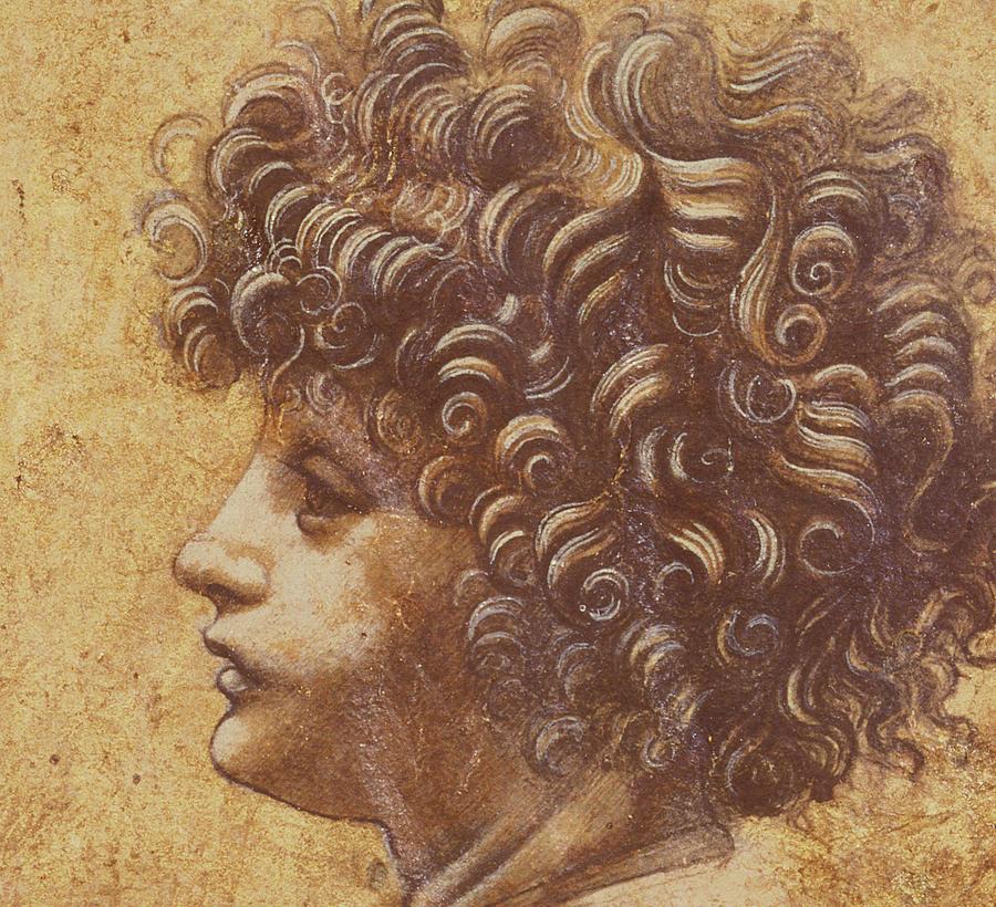 Study Of A Child S Head Drawing By Leonardo Da Vinci