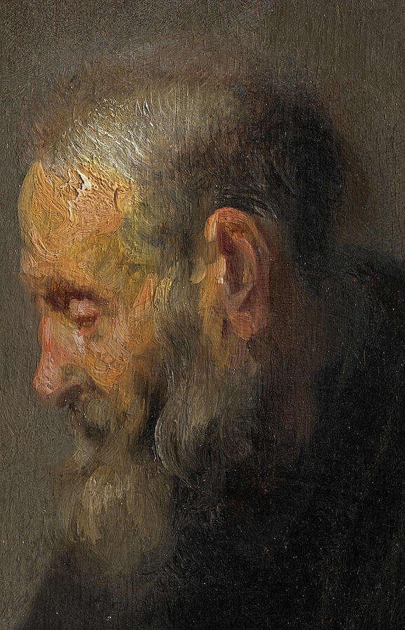 study of an old man in profile painting by rembrandt