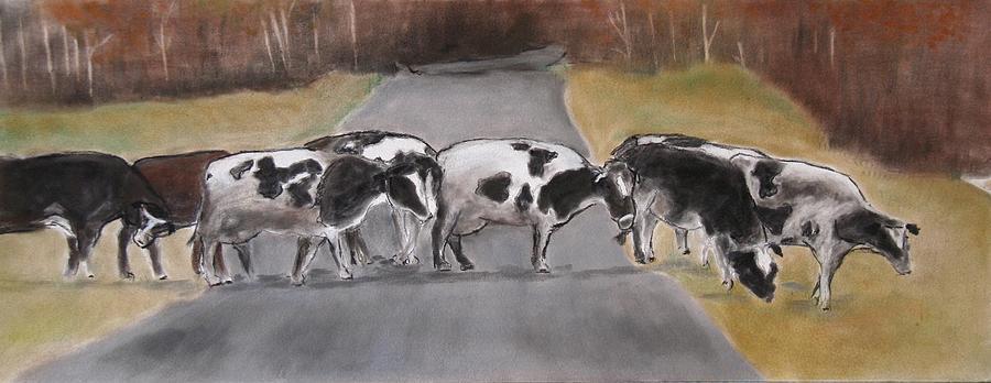 study of cows by Barbara Gulotta