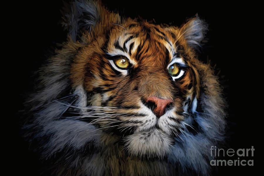 Animal Photograph - Sumatran Tiger by Sheila Smart Fine Art Photography