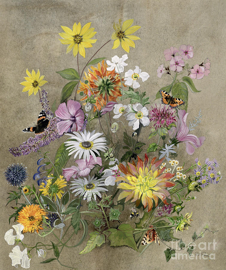 Red Admiral; Butterfly; Daisy; Sweet; Pea; Narcissus; Painting - Summer Flowers by John Gubbins