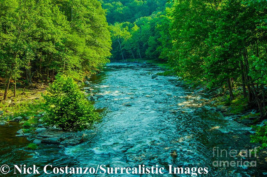 Digital Photography Photograph - Summer Stream by Nicholas Costanzo