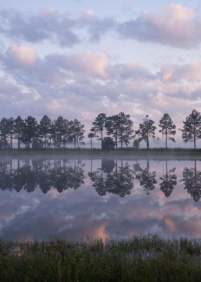 2009 Photograph - Sunrise Across the Pond by Lauren Brice