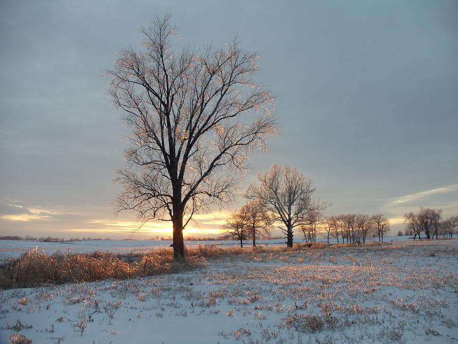 Landscape Photograph - Sunset Over Icy Field by David Junod