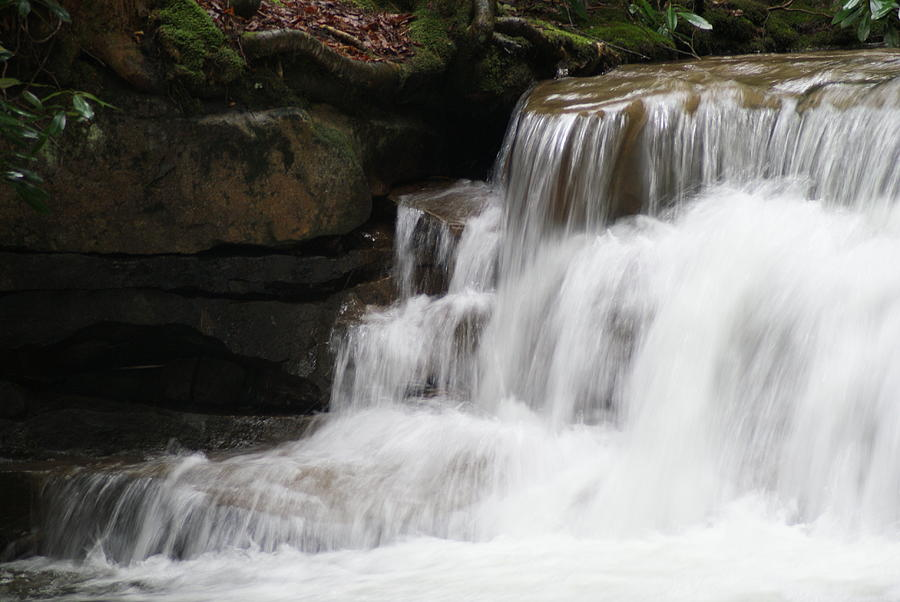 Water Photograph - Swallow Falls by Heather Green