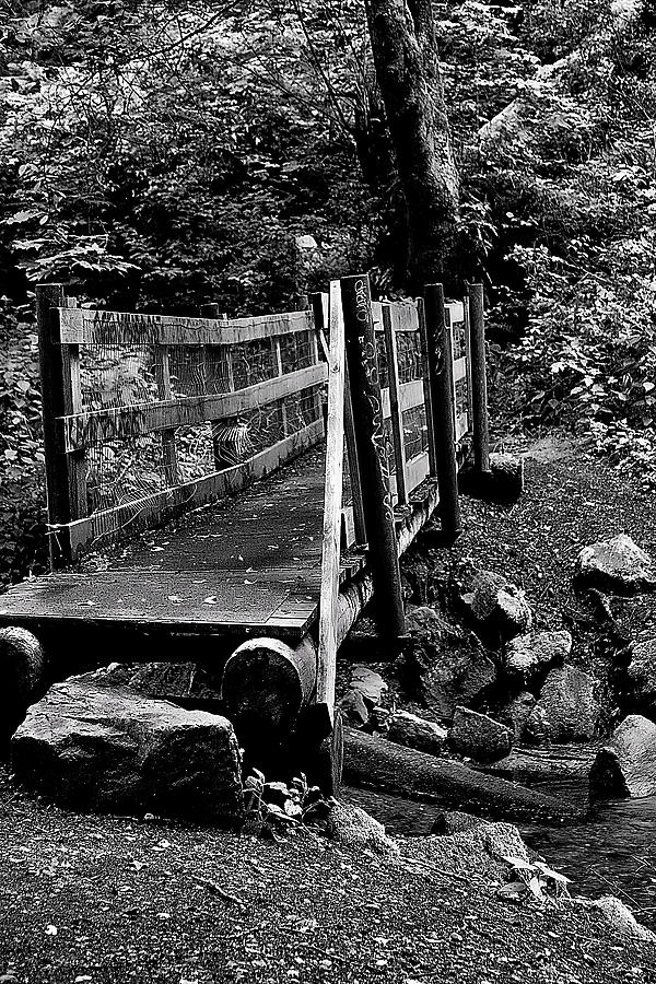 Black And White Photograph - Swan Creek Footbridge by David Patterson