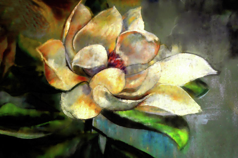 Sweet Magnolia Of Alabama by Lesa Fine