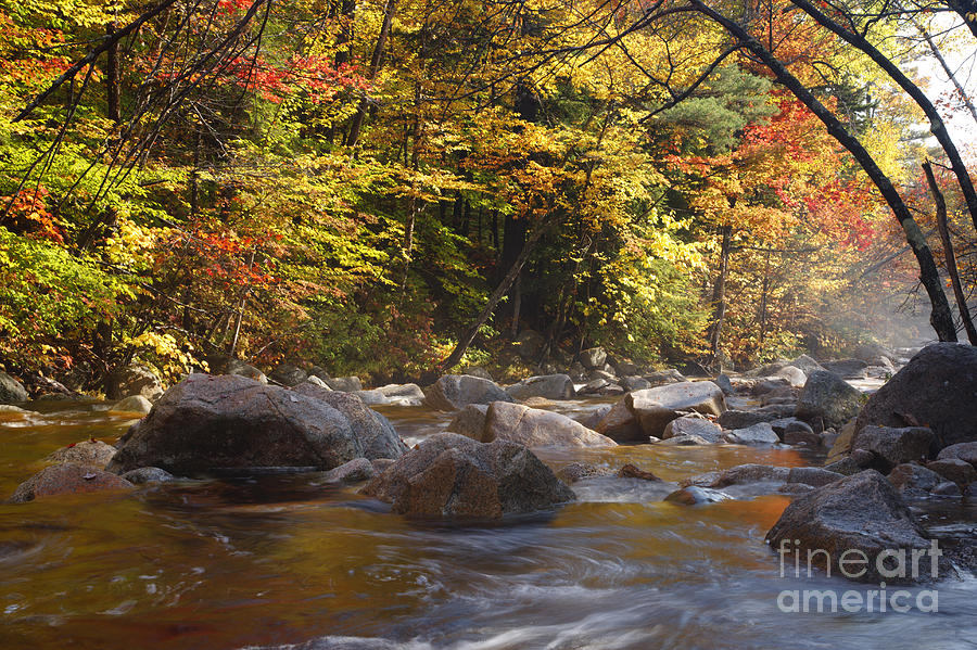 Swift River Photograph - Swift River - White Mountains New Hampshire Usa by Erin Paul Donovan