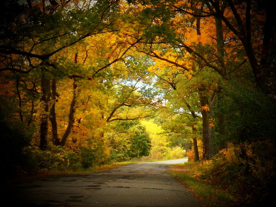 Michigan Photograph - Take Me Home by Joyce Kimble Smith