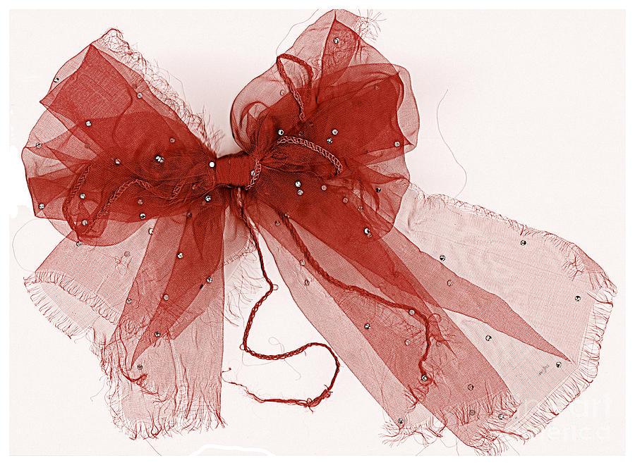 Scanography Photograph - Tattered Red by Dolly Mohr