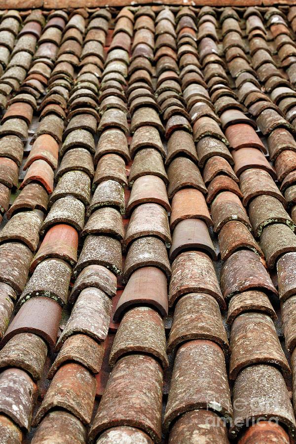 Rooftop Photograph - Terra Cotta Roof Tiles by Gaspar Avila