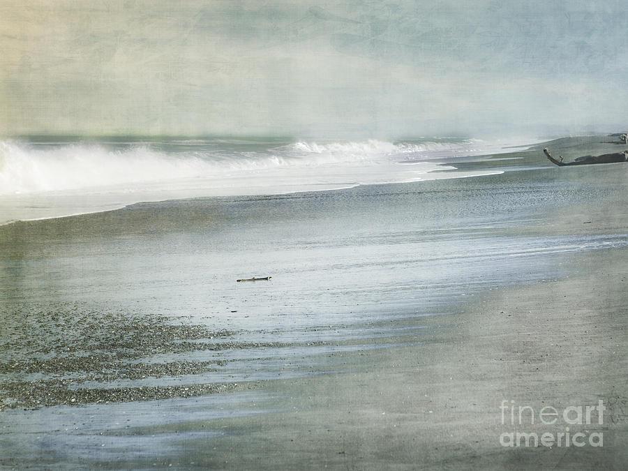 Beach Photograph - The Beach by Linde Townsend