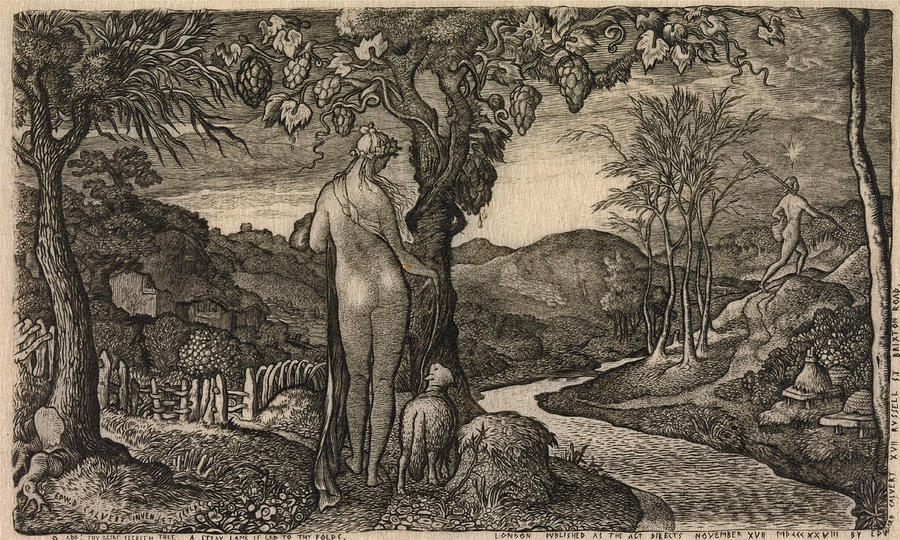 The Bride Drawing - The Bride by Edward Calvert