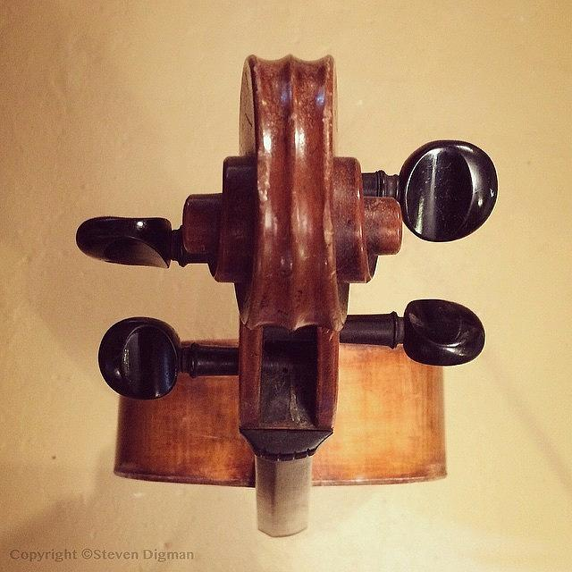 Cello Photograph - The Cello Box  by Steven Digman