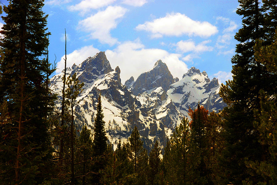 Mountains Photograph - The Grand Tetons by Susanne Van Hulst