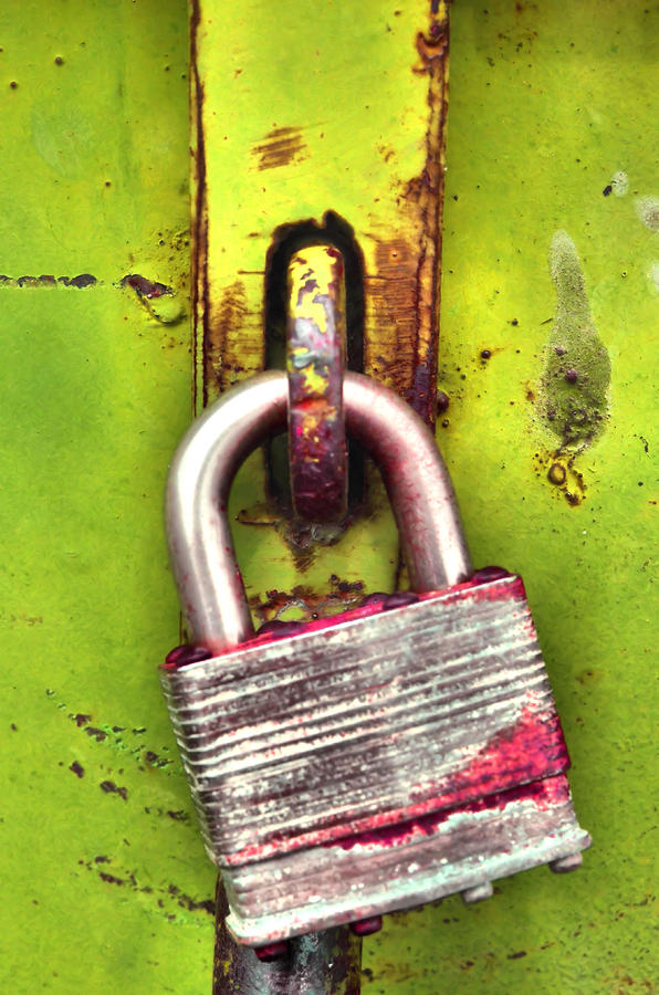 Lock Photograph - The Lock by Tara Turner