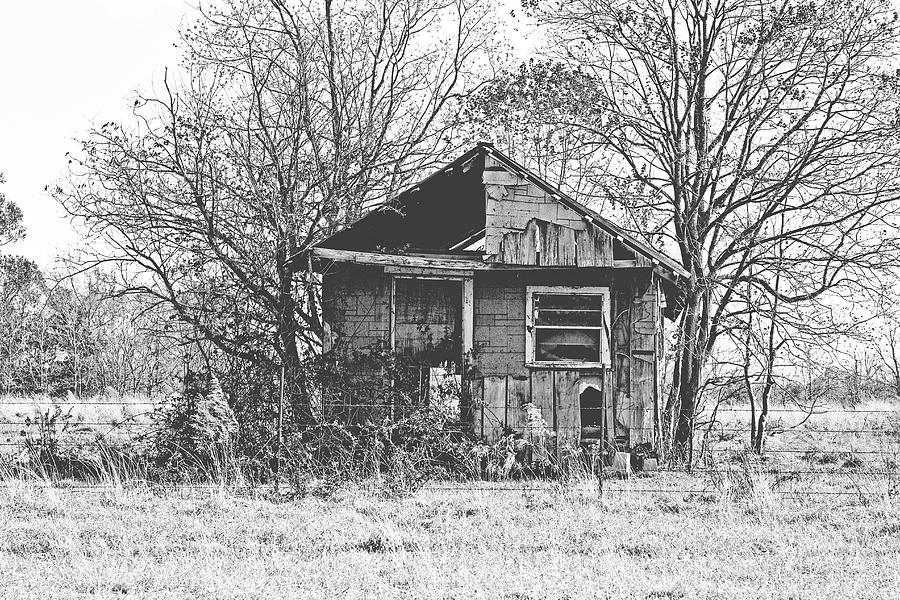 House Photograph - The Old Home Place by Scott Pellegrin