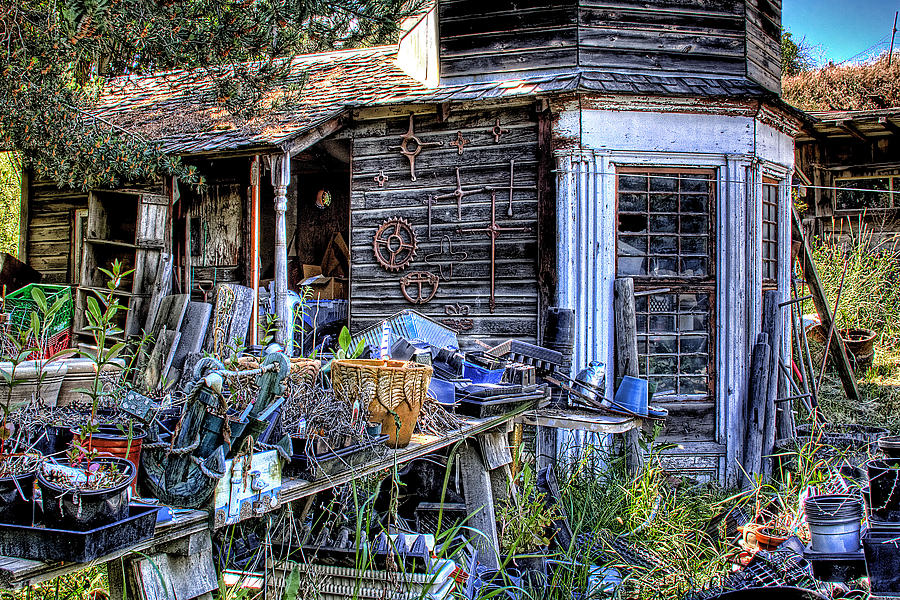 Shed Photograph - The Old Shed by David Patterson