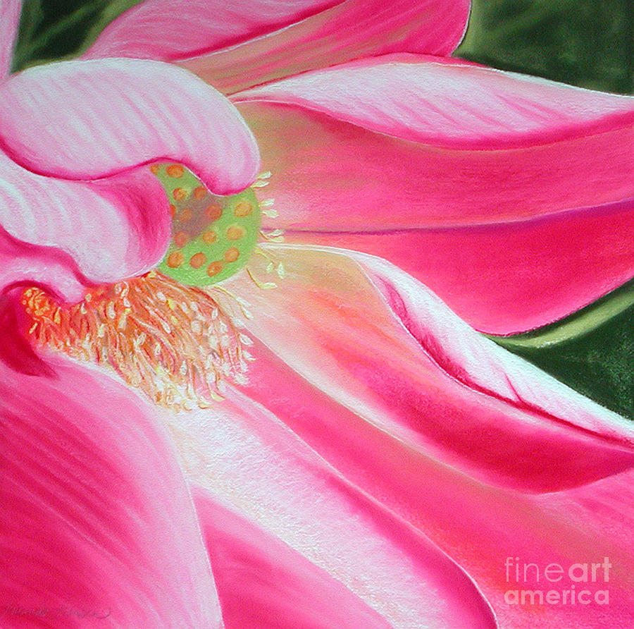 Pink Flower Painting - The Pink by Lucinda  Hansen