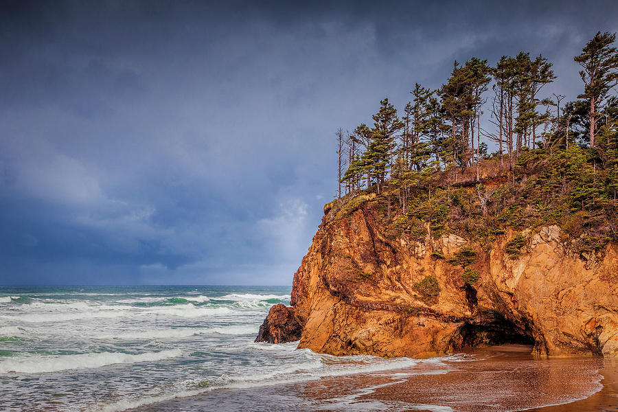 Oregon Photograph - The Remote Coast by Andrew Soundarajan