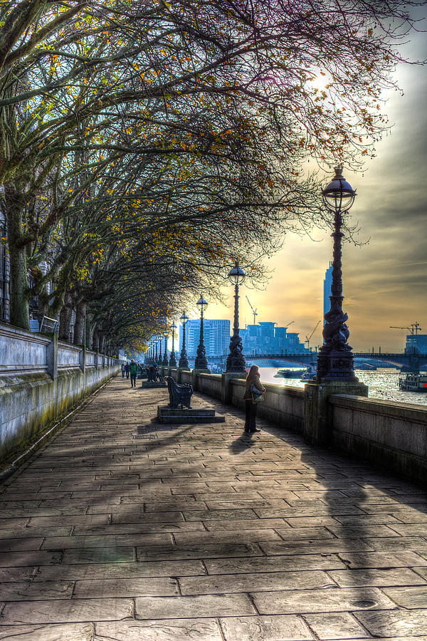 Westminster Photograph - The River Thames Path by David Pyatt