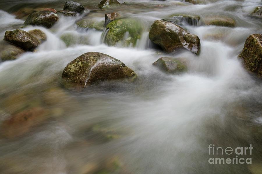 the Rocks by Rod Wiens