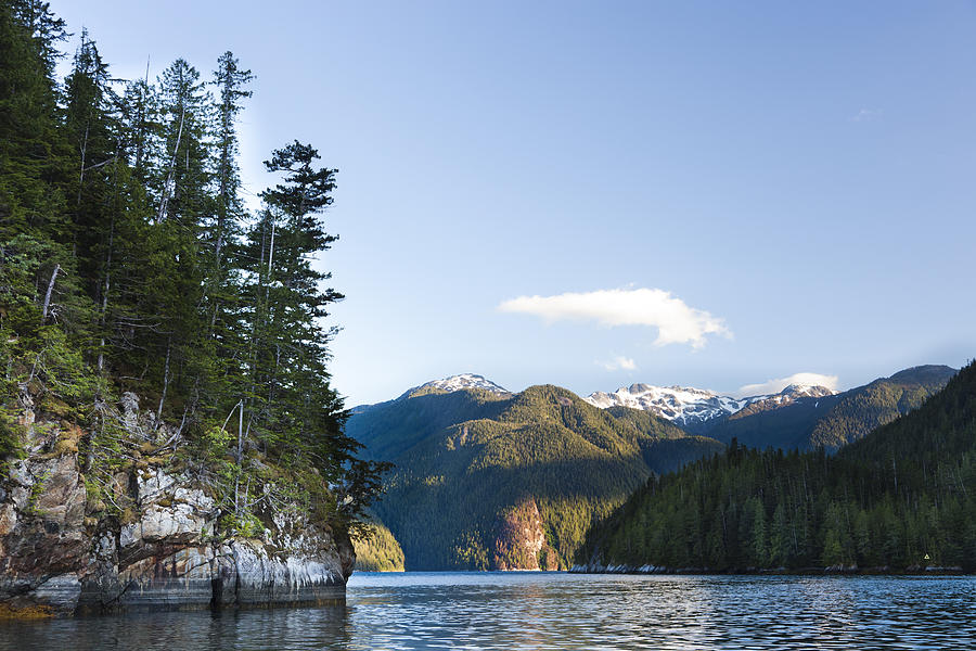 No People Photograph - The Rugged, Rocky Forested Shoreline by Taylor S. Kennedy