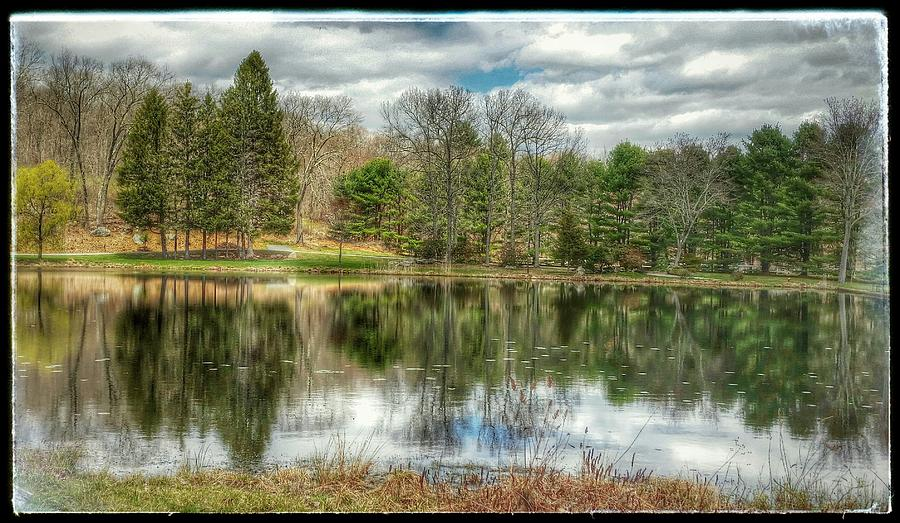 Trees Photograph - The Spring Pond by Diane Hawkins