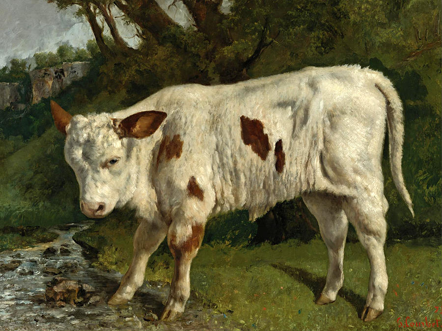 Gustave Courbet Painting - The White Calf by Gustave Courbet