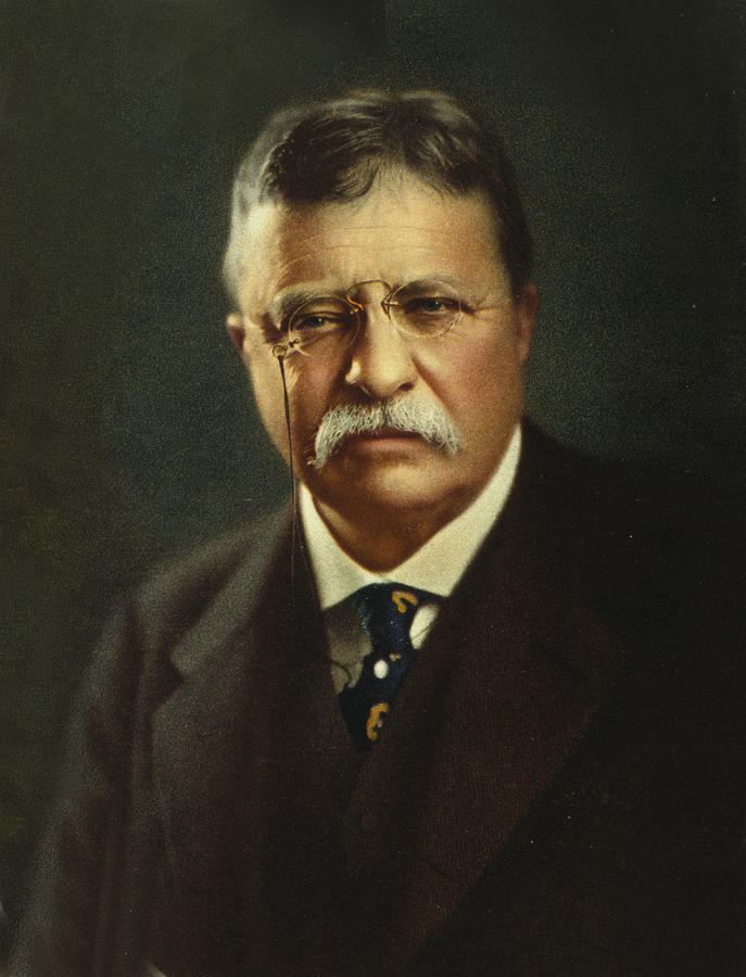achievements of theodore roosevelt a president of the united states Theodore roosevelt was the 26th president of united states of america go through this biography to know in detail about his life, profile, & timeline.