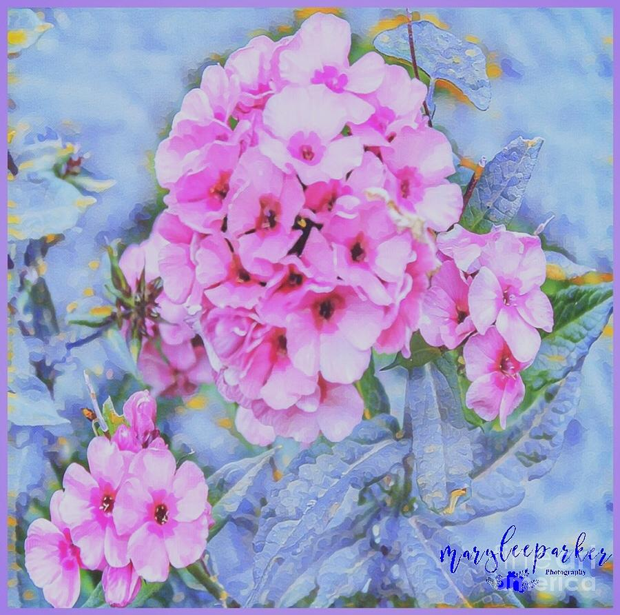Flowers Digital Art - Thinking Of Spring by MaryLee Parker