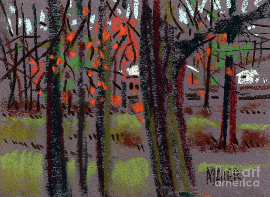 Plein Air Drawing - Thru The Trees by Donald Maier