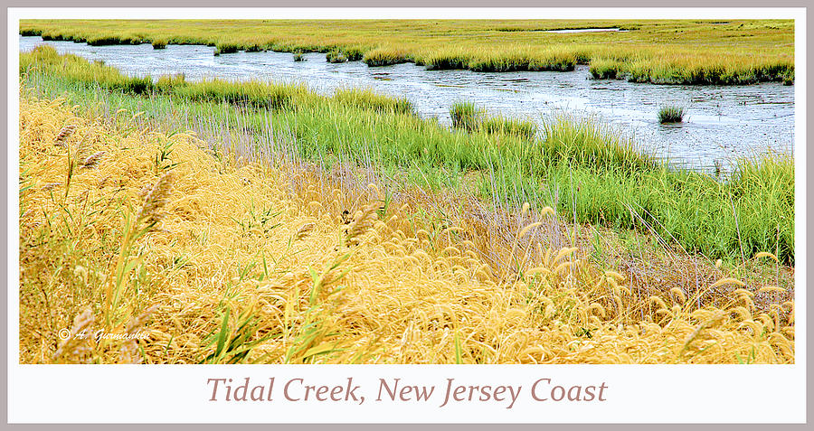 Tidal Creek Digital Art - Tidal Creek Mud Flat At Low Tide by A Gurmankin