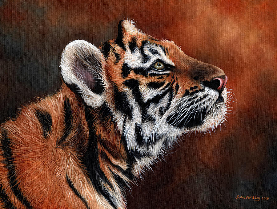 Leopard Drawing - Tiger Cub by Sarah Stribbling