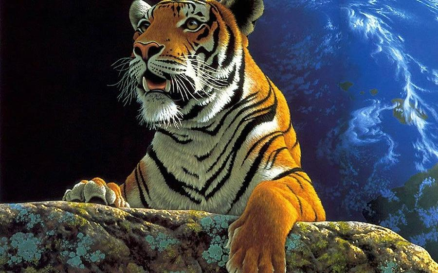Tiger Digital Art - Tiger by Dorothy Binder
