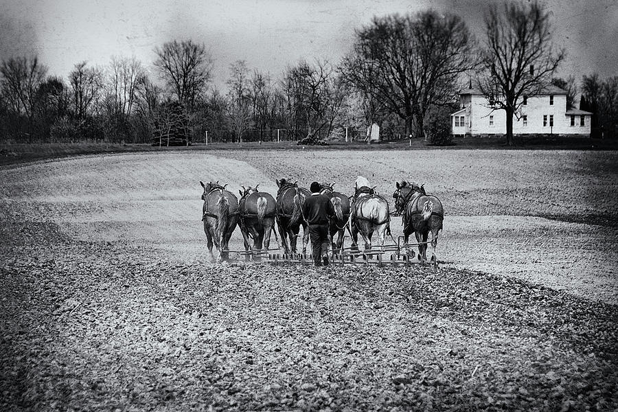 Agriculture Photograph - Tilling The Fields by Tom Mc Nemar