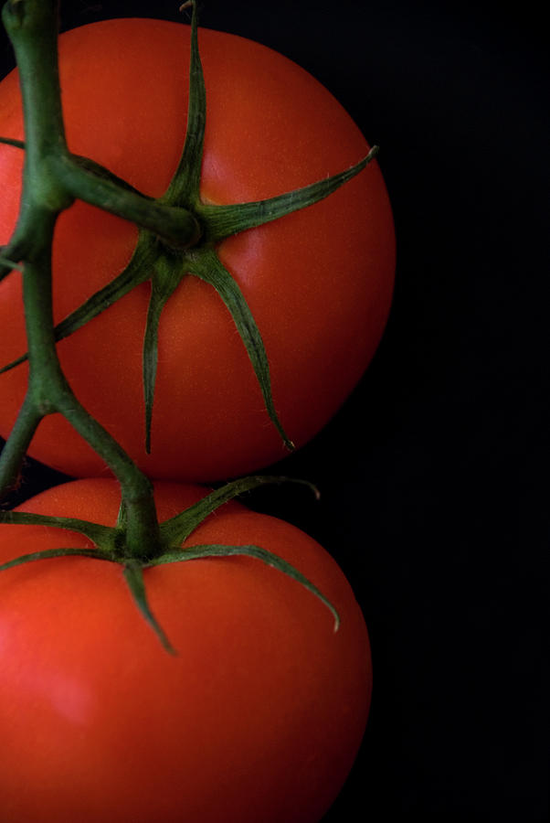 Tomatoes Photograph - Tomatoes by Jessica Wakefield