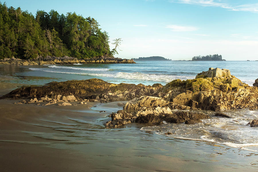Tonquin Beach by Crystal Hoeveler