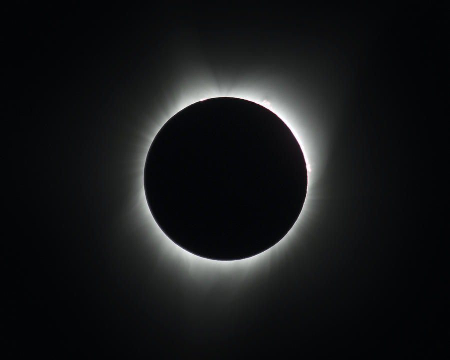 Solar Eclipse Photograph - Totality by John King