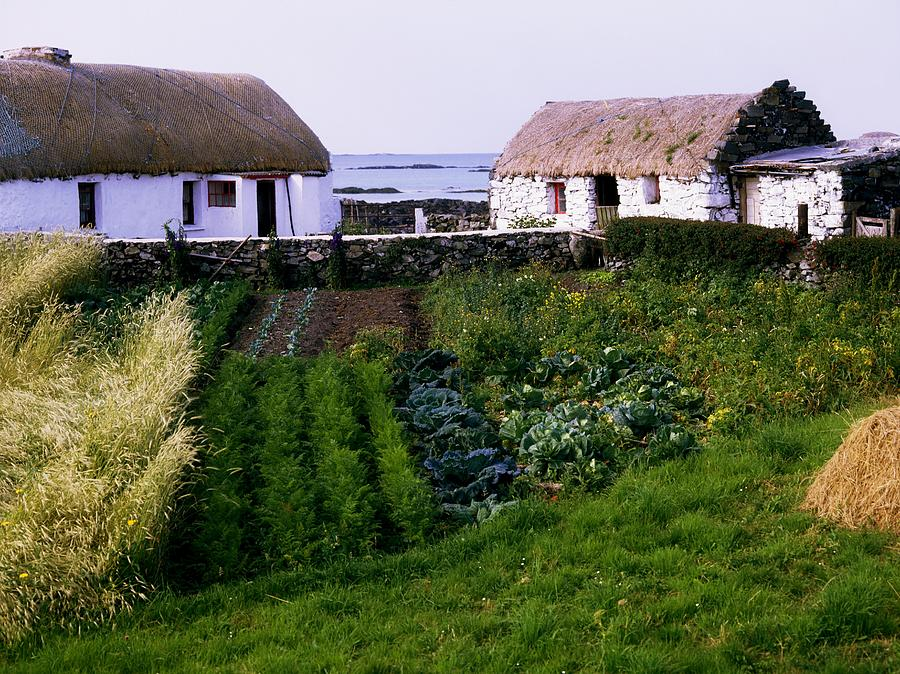 Architecture Photograph - Traditional Cottages, Co Galway, Ireland by The Irish Image Collection