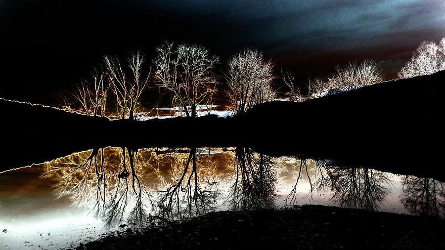 Tree Reflections Landscape Photograph