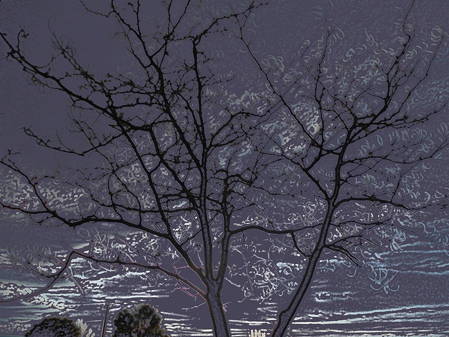 Trees Digital Art