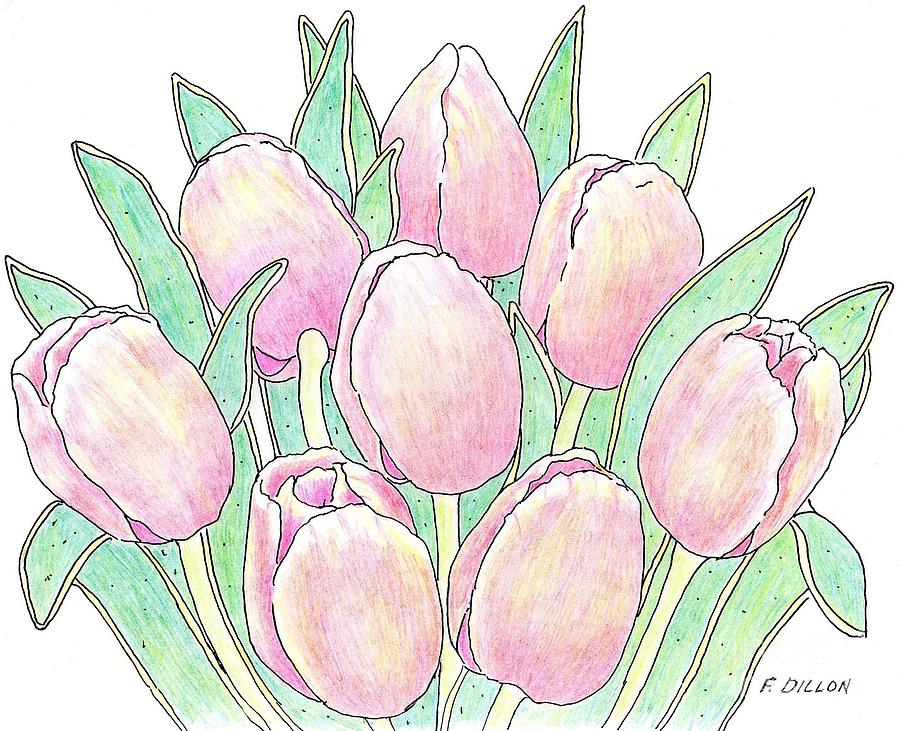 Tulip Bouquet Drawing by Frances Dillon