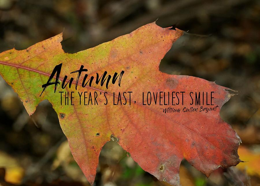 Autumn Photograph - Turn A Leaf Quote by JAMART Photography