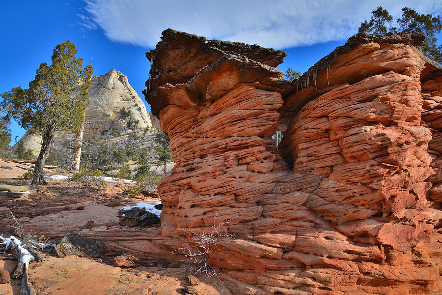 Zion National Park Photograph - Twins 2 by Ray Mathis