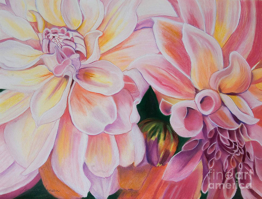 Flowers Painting - Two Dahlias by Lucinda  Hansen