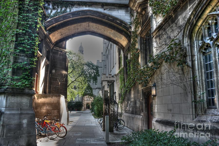 University Of Chicago Photograph - University Of Chicago by David Bearden