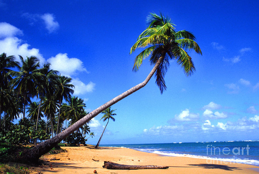 Puerto Rico Photograph - Vacia Talega Beach by Thomas R Fletcher