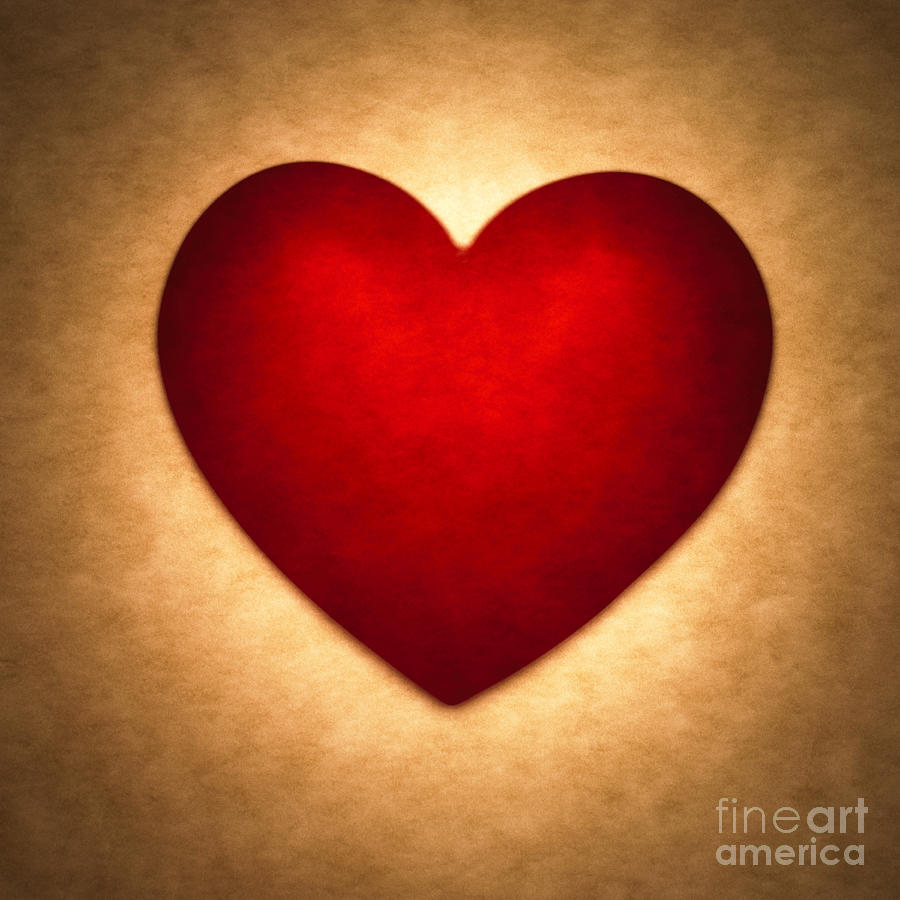 Heart Photograph   Valentine Heart By Tony Cordoza