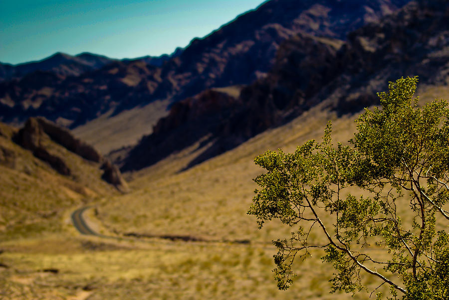 Valley Of Fire Photograph - Valley Of Fire Nevada by Patrick  Flynn